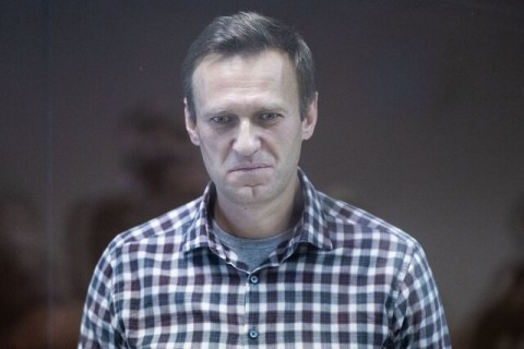 'Anything to further my Communist agenda'. Another day's developments in Navalny's loss of 'prisoner of conscience' status at Amnesty International
